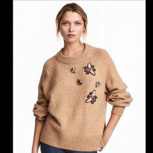 H&M Jewel Bug Sweater